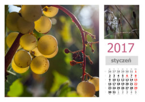 kalendarz-miesieczny4